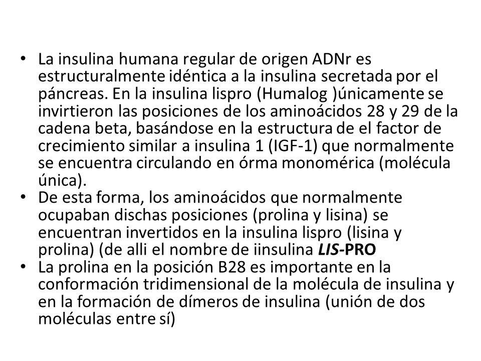 Diabetes Mellitus Tratamiento con Insulina - ppt descargar