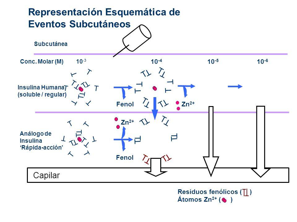 Representación Esquemática de Eventos Subcutáneos