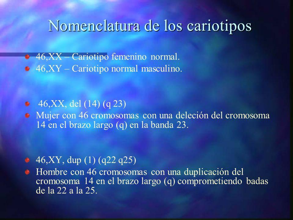 Nomenclatura de los cariotipos