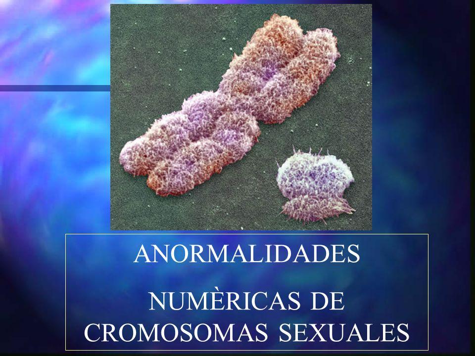 NUMÈRICAS DE CROMOSOMAS SEXUALES