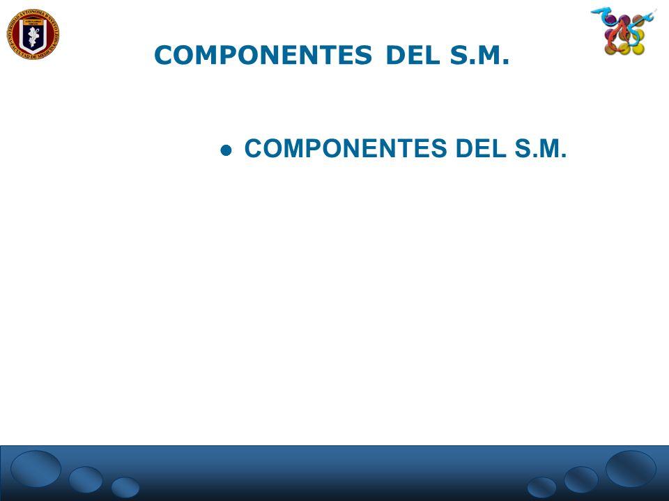 COMPONENTES DEL S.M. COMPONENTES DEL S.M.