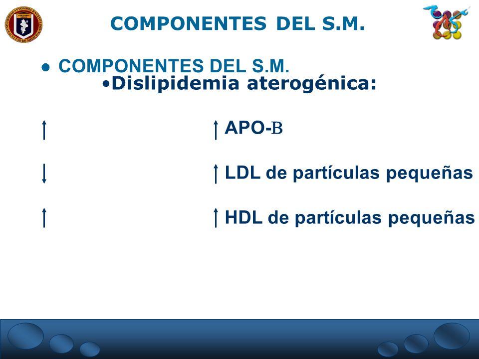 COMPONENTES DEL S.M. COMPONENTES DEL S.M. Dislipidemia aterogénica: APO- LDL de partículas pequeñas.