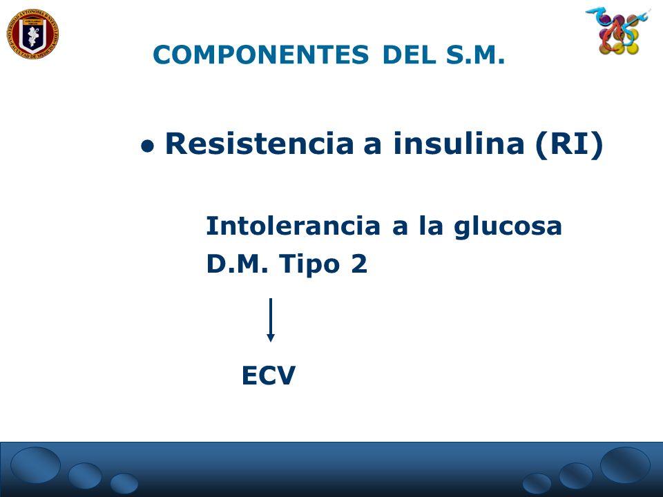 Resistencia a insulina (RI)
