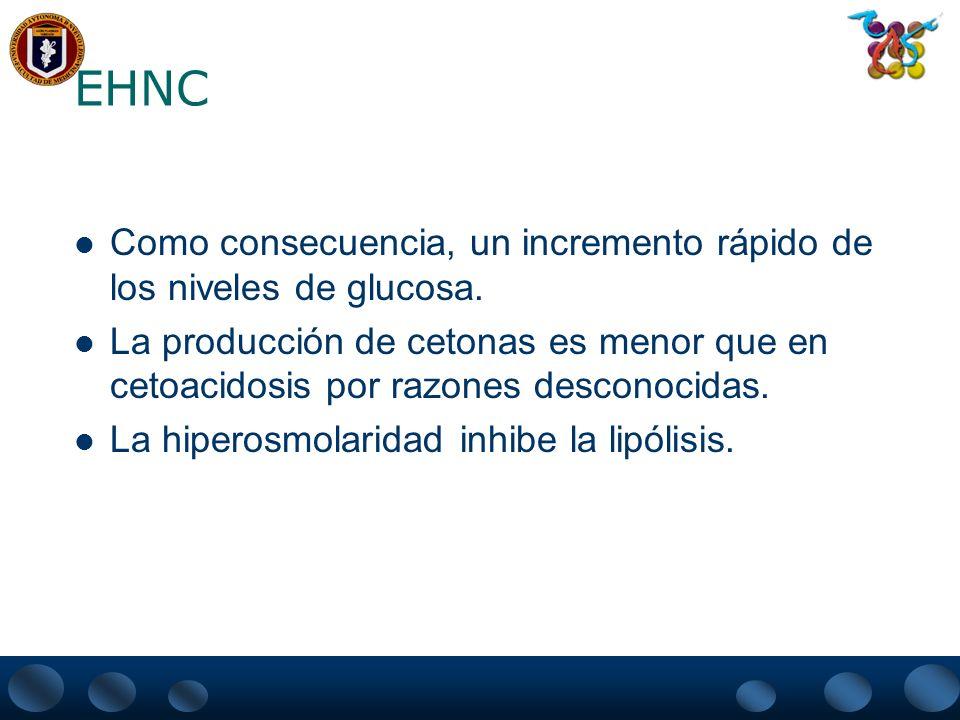 EHNC Como consecuencia, un incremento rápido de los niveles de glucosa.