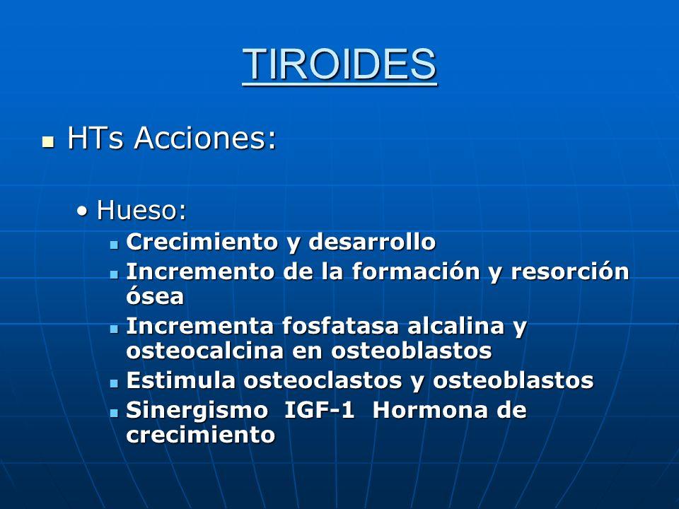TIROIDES HTs Acciones: Hueso: Crecimiento y desarrollo