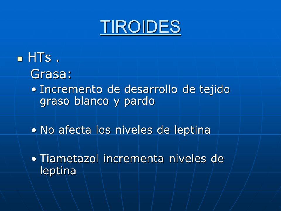 TIROIDES HTs . Grasa: Incremento de desarrollo de tejido graso blanco y pardo. No afecta los niveles de leptina.