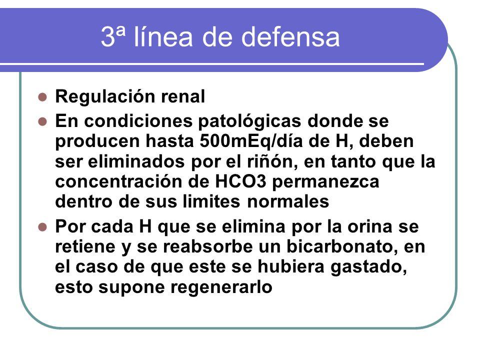 3ª línea de defensa Regulación renal