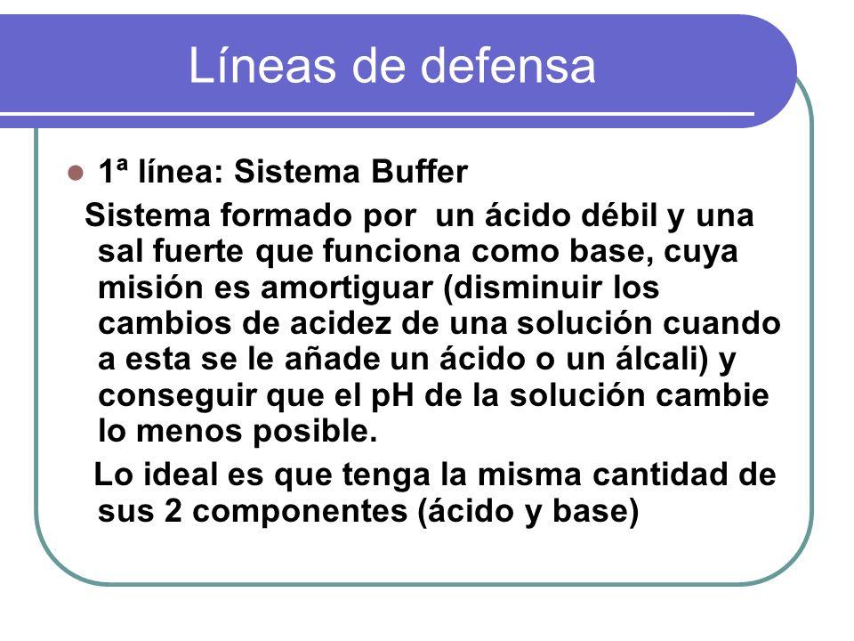 Líneas de defensa 1ª línea: Sistema Buffer