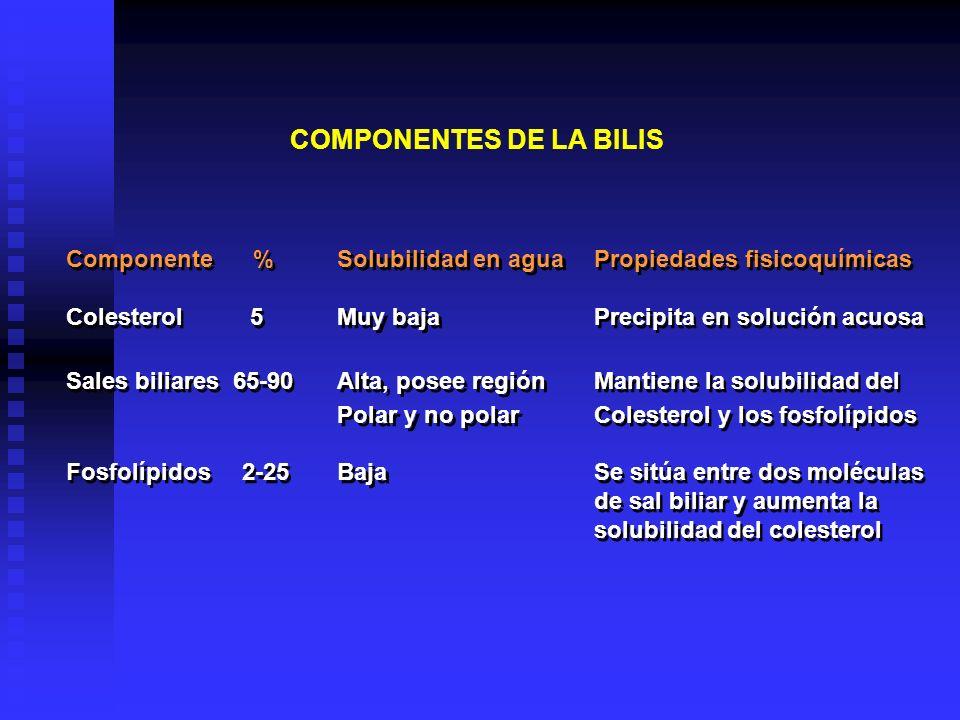COMPONENTES DE LA BILIS