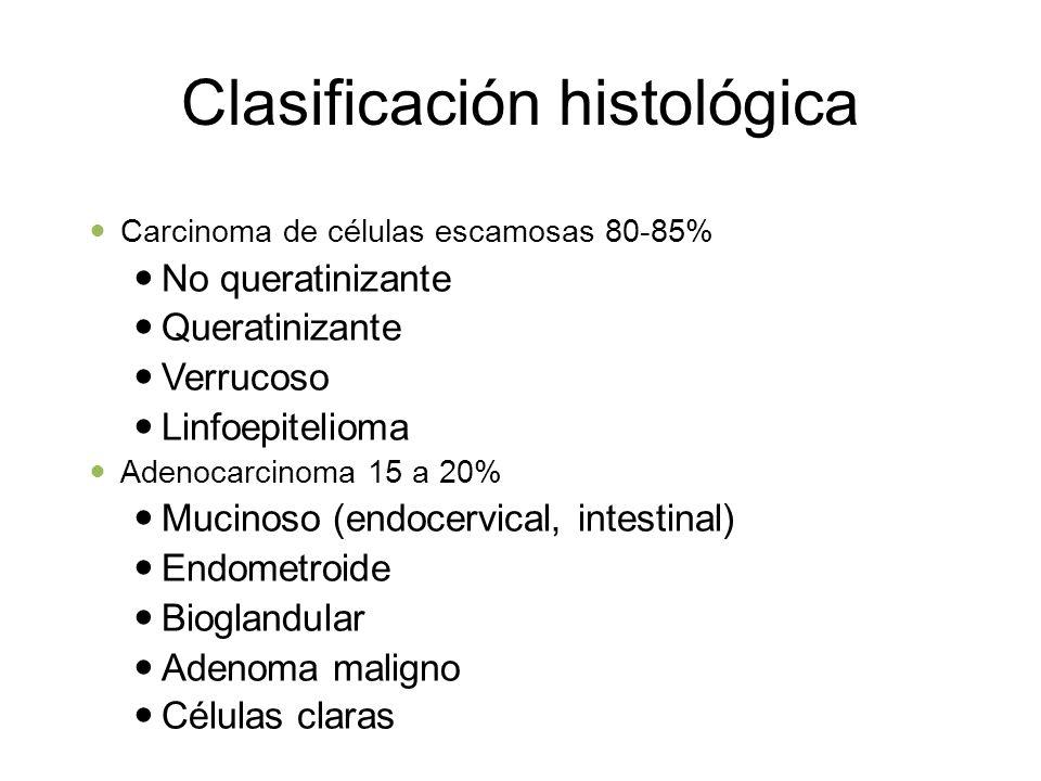 Clasificación histológica