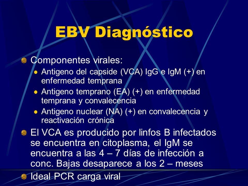 EBV Diagnóstico Componentes virales: