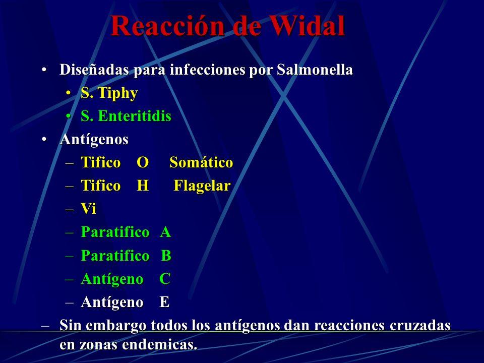 Reacción de Widal Diseñadas para infecciones por Salmonella S. Tiphy
