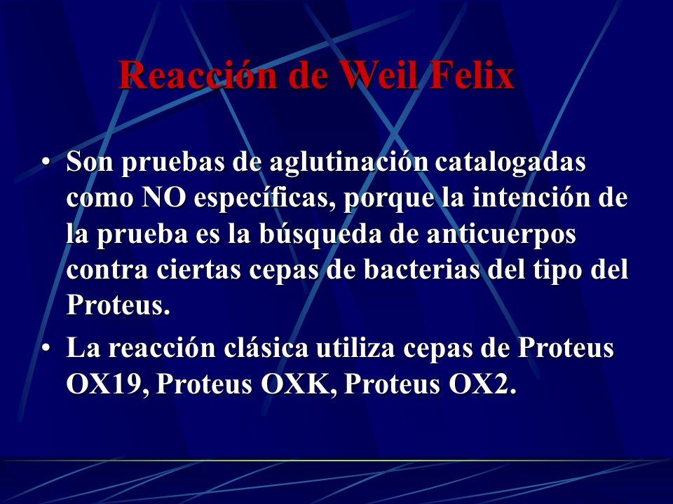 Reacción de Weil Felix