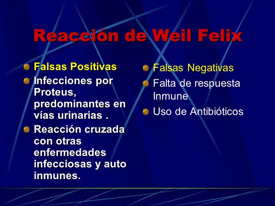 Reacción de Weil Felix Falsas Positivas