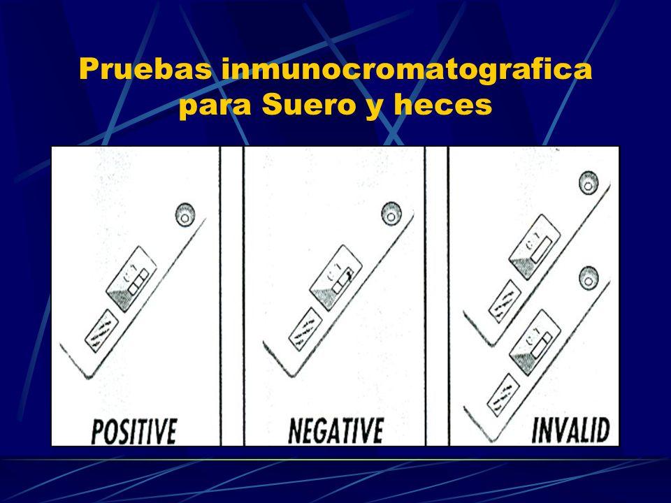 Pruebas inmunocromatografica para Suero y heces