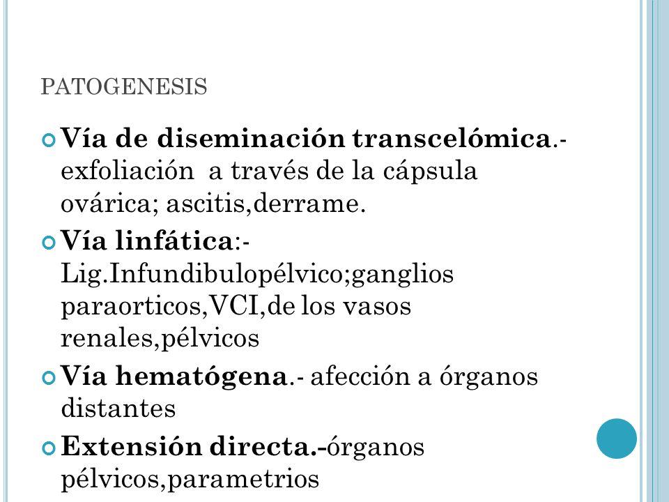 patogenesis Vía de diseminación transcelómica.- exfoliación a través de la cápsula ovárica; ascitis,derrame.