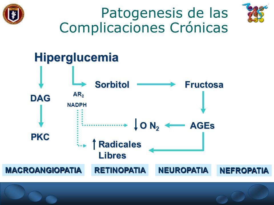 Patogenesis de las Complicaciones Crónicas