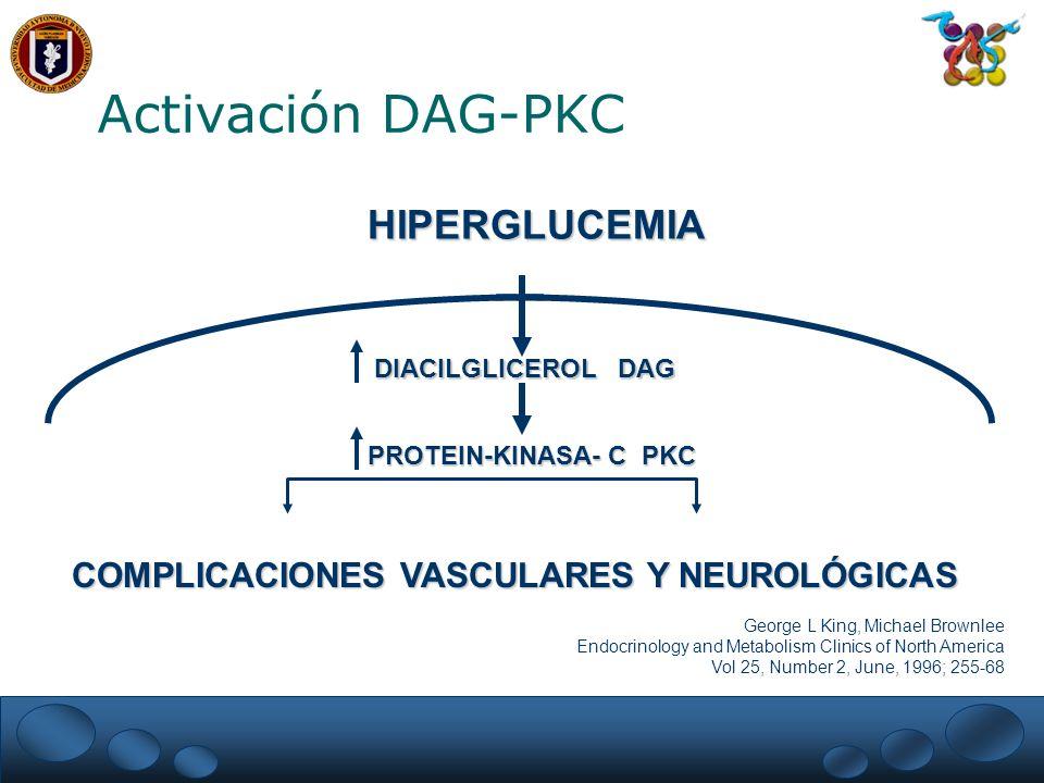 Activación DAG-PKC HIPERGLUCEMIA