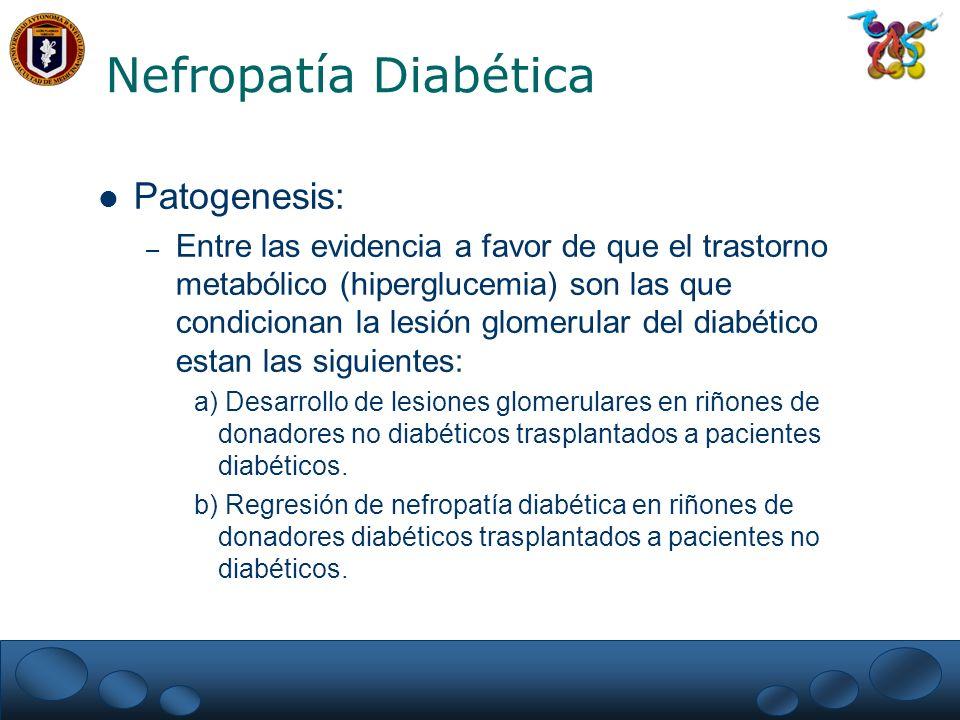 Nefropatía Diabética Patogenesis: