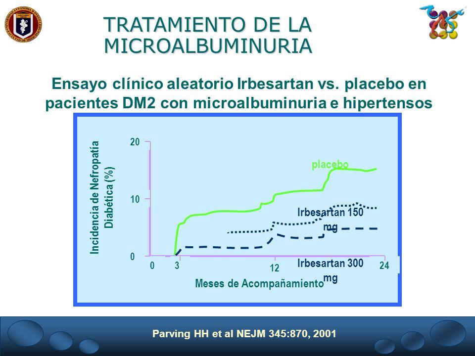 Incidencia de Nefropatía Diabética (%) Meses de Acompañamiento