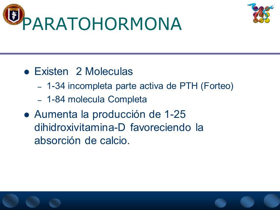 PARATOHORMONA Existen 2 Moleculas