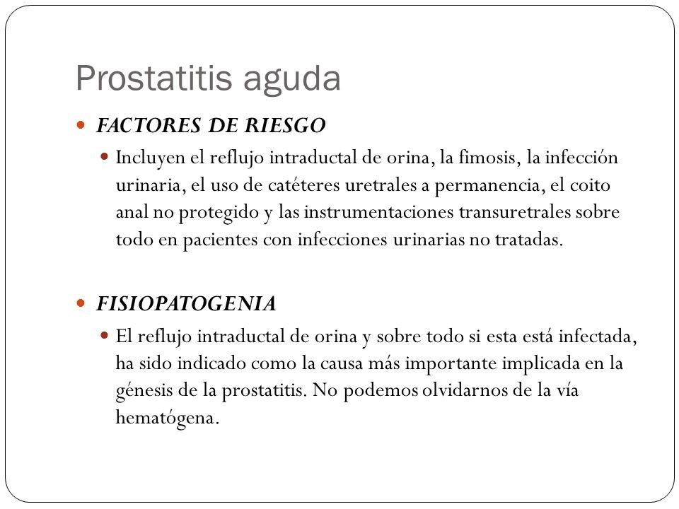 Prostatitis aguda FACTORES DE RIESGO FISIOPATOGENIA
