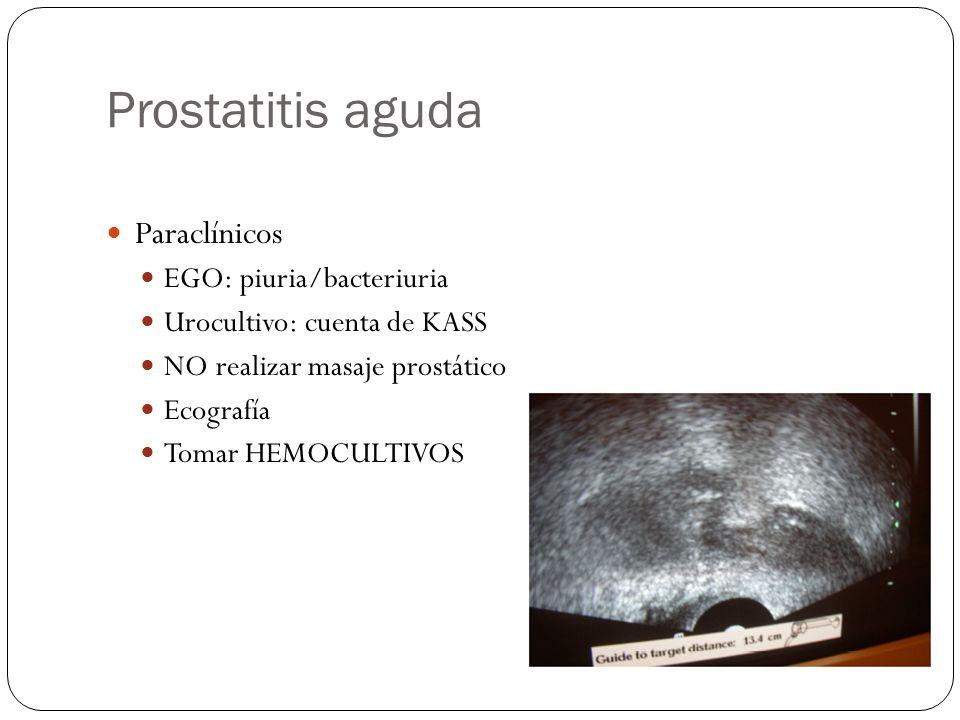 Prostatitis aguda Paraclínicos EGO: piuria/bacteriuria