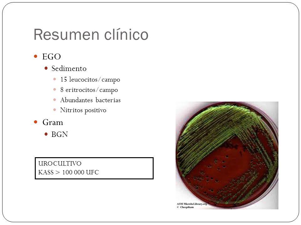Resumen clínico EGO Gram Sedimento BGN 15 leucocitos/campo