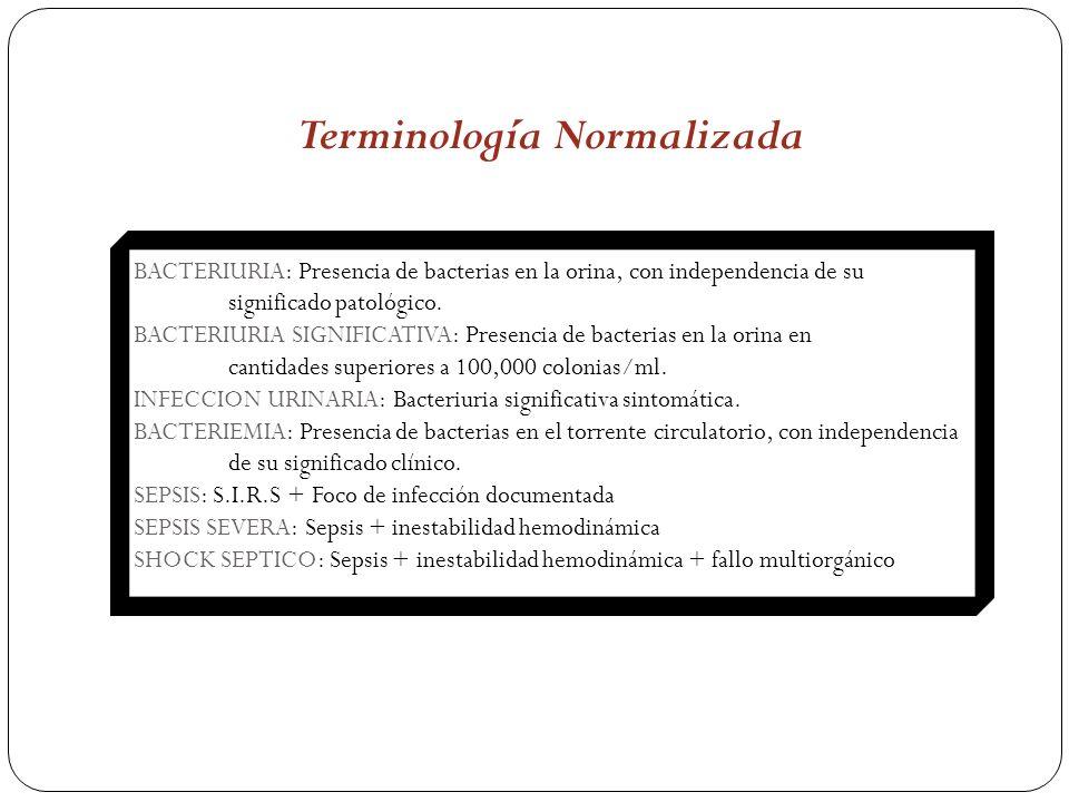 Terminología Normalizada