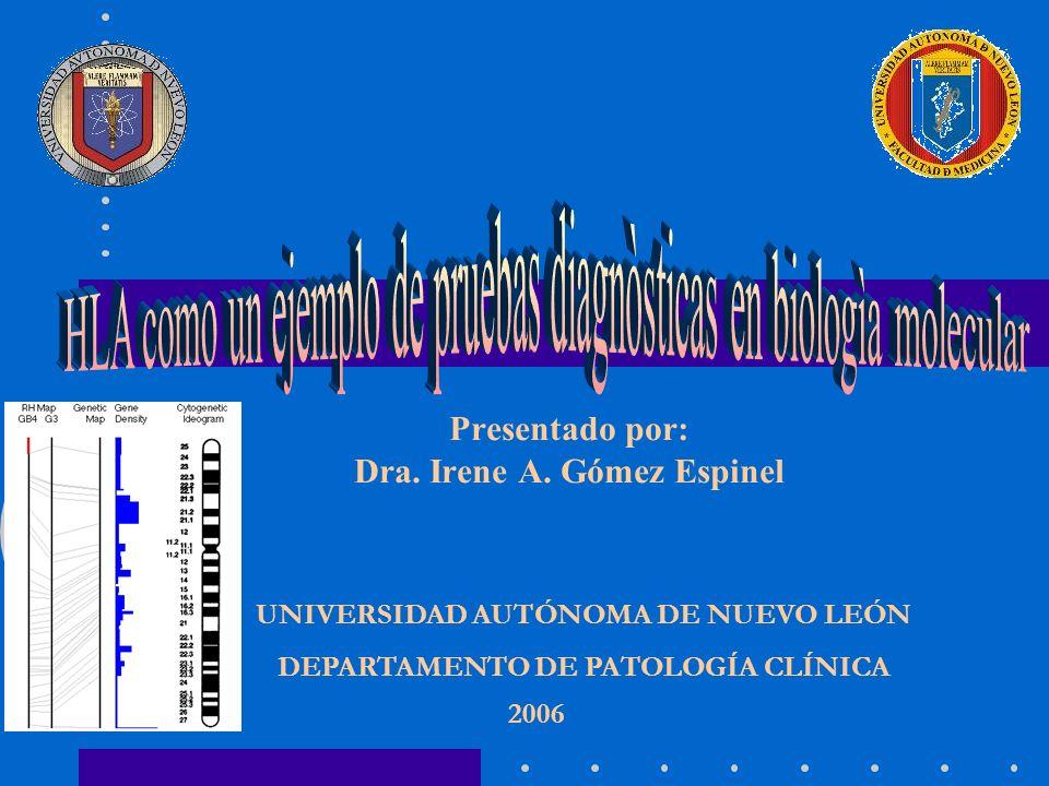 Presentado por: Dra. Irene A. Gómez Espinel