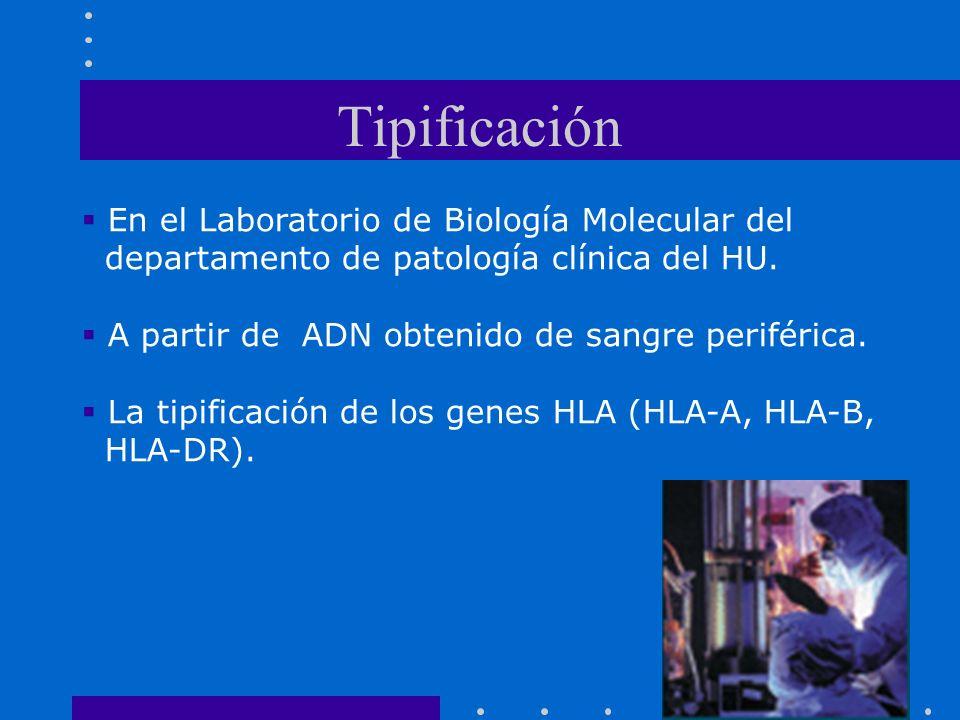 Tipificación En el Laboratorio de Biología Molecular del