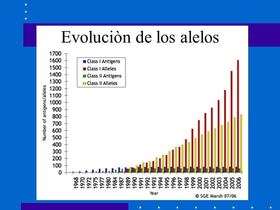 Evoluciòn de los alelos