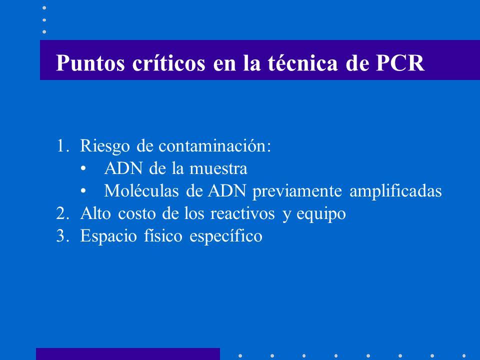 Puntos críticos en la técnica de PCR