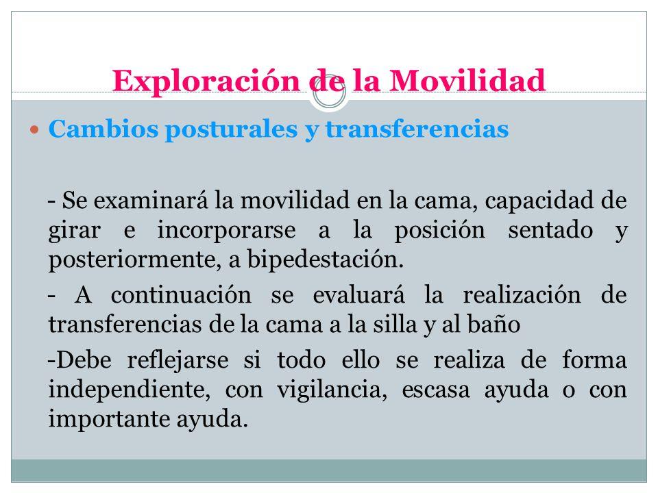 Exploración de la Movilidad