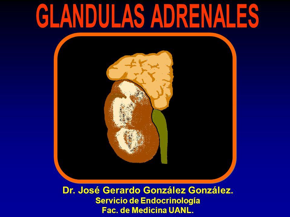 Dr. José Gerardo González González. Servicio de Endocrinología