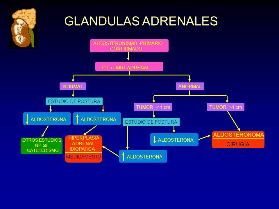GLANDULAS ADRENALES ALDOSTERONOMA CIRUGIA ALDOSTERONISMO PRIMARIO
