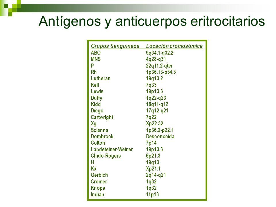 Antígenos y anticuerpos eritrocitarios