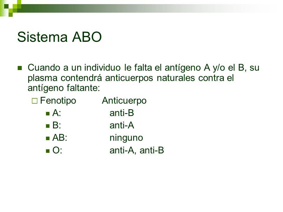 Sistema ABO Cuando a un individuo le falta el antígeno A y/o el B, su plasma contendrá anticuerpos naturales contra el antígeno faltante: