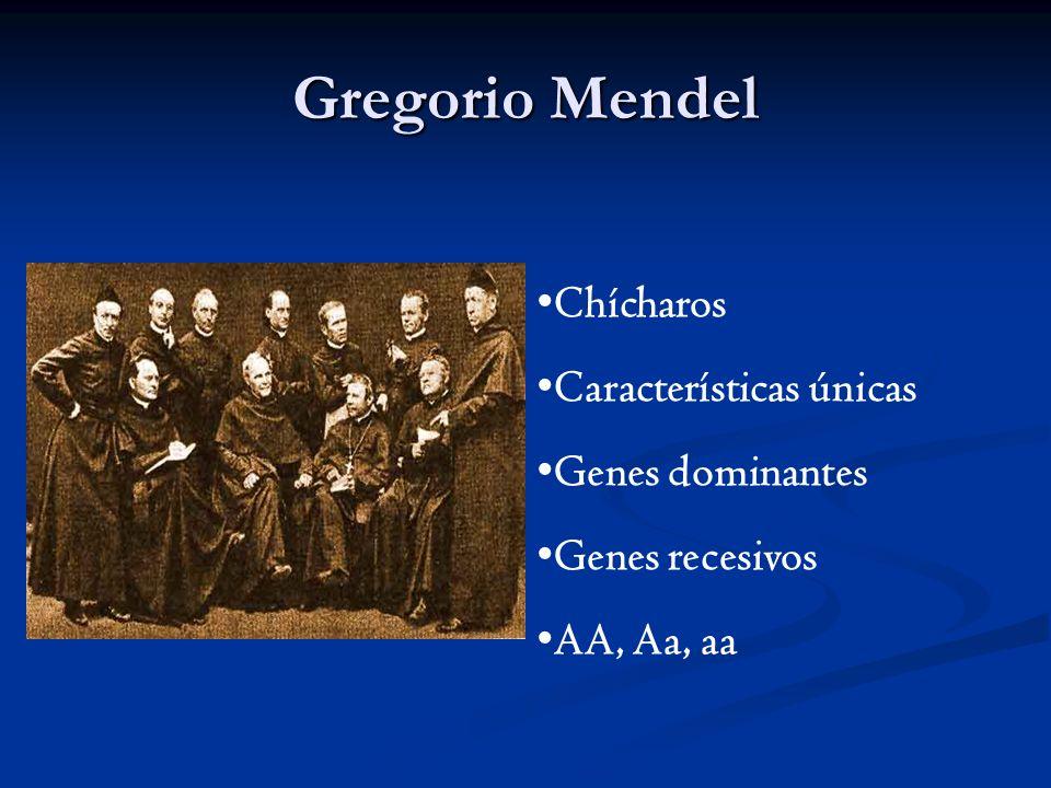 Gregorio Mendel Chícharos Características únicas Genes dominantes