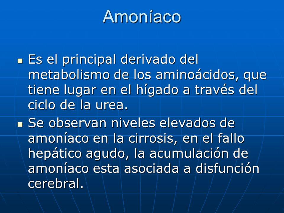 Amoníaco Es el principal derivado del metabolismo de los aminoácidos, que tiene lugar en el hígado a través del ciclo de la urea.