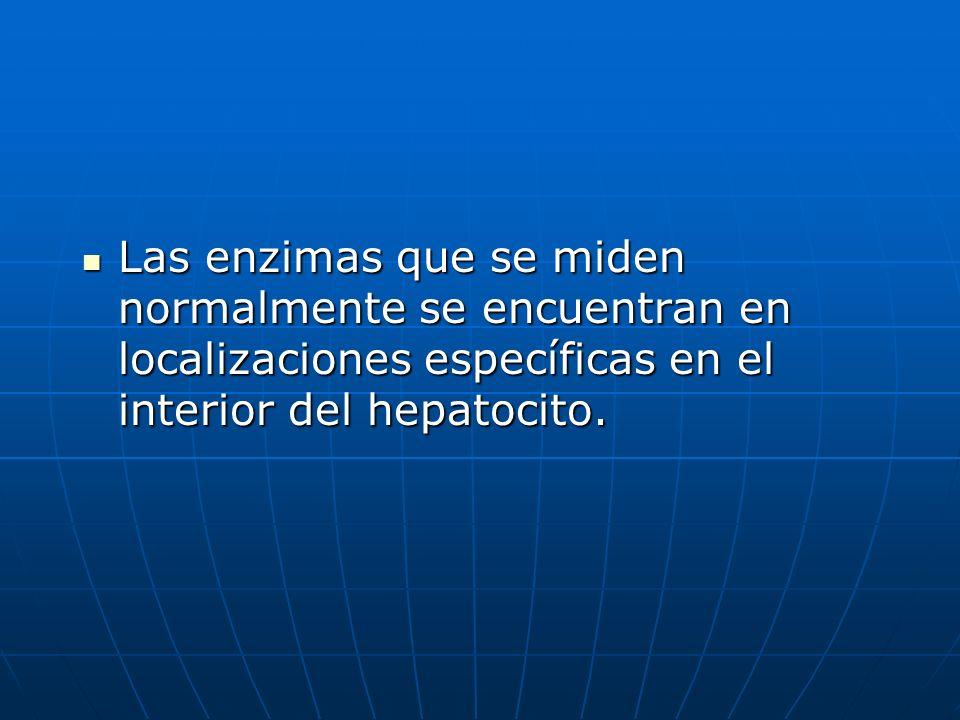 Las enzimas que se miden normalmente se encuentran en localizaciones específicas en el interior del hepatocito.