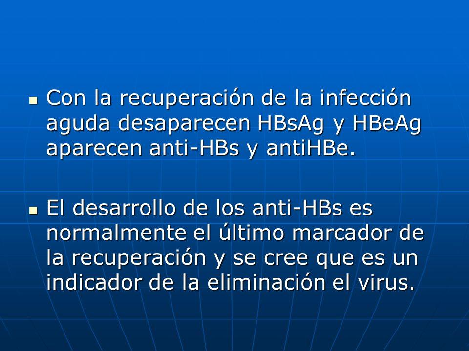 Con la recuperación de la infección aguda desaparecen HBsAg y HBeAg aparecen anti-HBs y antiHBe.