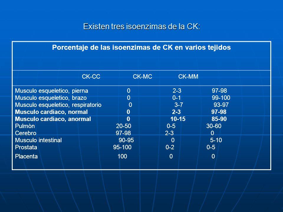 Existen tres isoenzimas de la CK:
