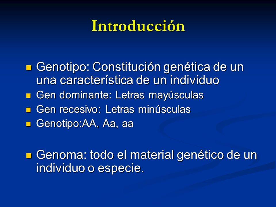 Introducción Genotipo: Constitución genética de un una característica de un individuo. Gen dominante: Letras mayúsculas.