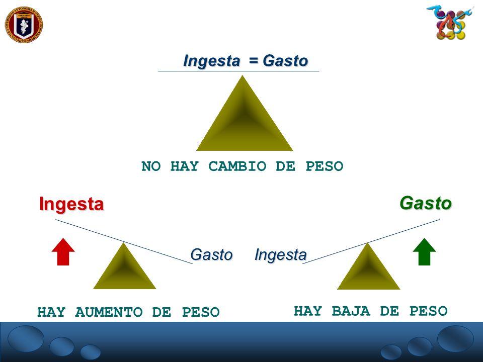 Ingesta Gasto Ingesta = Gasto NO HAY CAMBIO DE PESO Gasto Ingesta