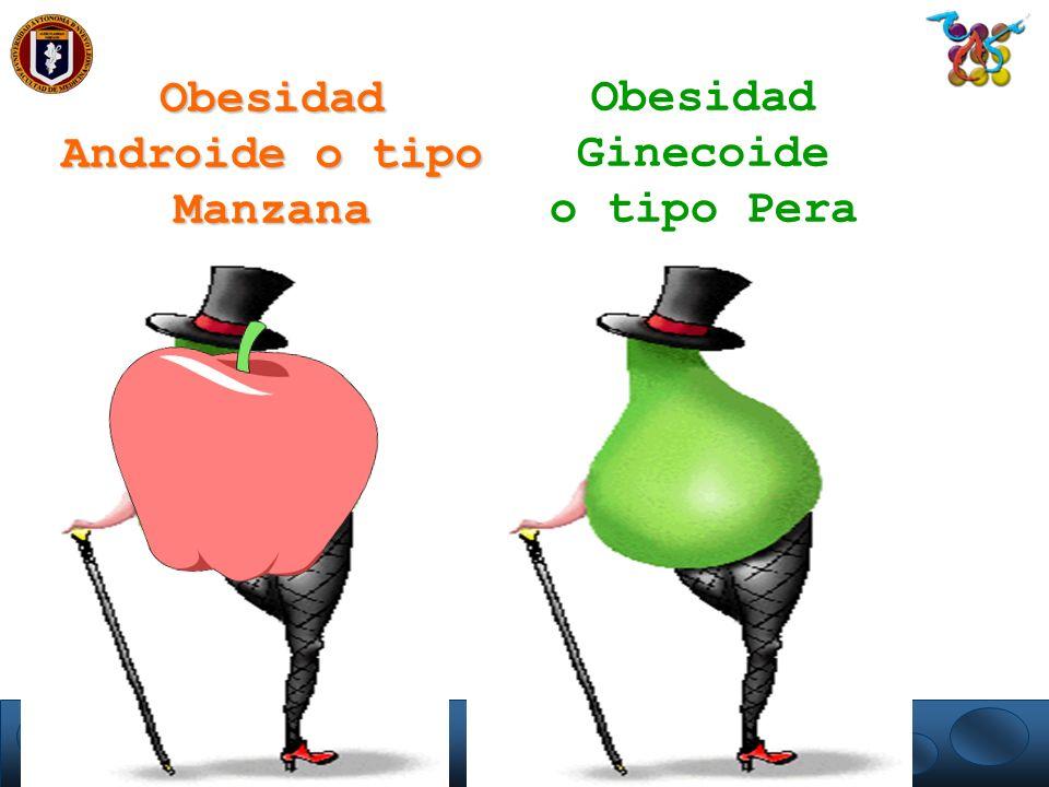 Obesidad Androide o tipo Manzana