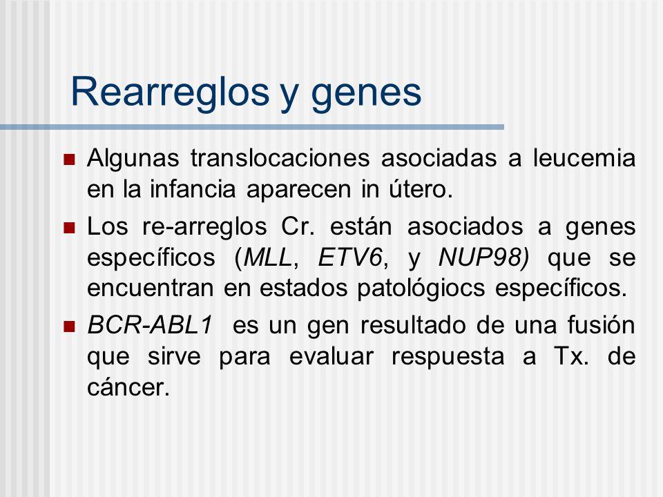 Rearreglos y genes Algunas translocaciones asociadas a leucemia en la infancia aparecen in útero.