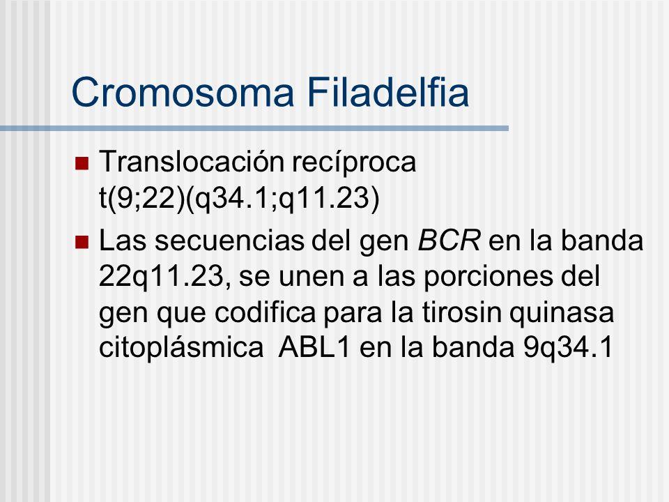 Cromosoma Filadelfia Translocación recíproca t(9;22)(q34.1;q11.23)