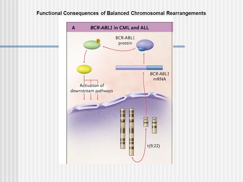 Functional Consequences of Balanced Chromosomal Rearrangements
