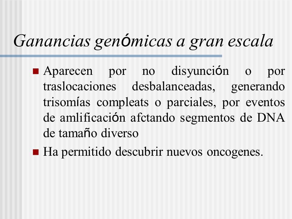 Ganancias genómicas a gran escala